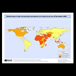 Global map of male circumcision prevalence at country level