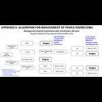 Adverse Event Action Guide for Voluntary Medical Male Circumcision by Surgery or Device (Appendix 8: Algorithm for Management of Penile Haematoma)